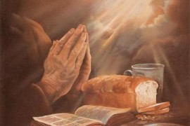 Mensaje del Papa para la LII Jornada Mundial de Oración por las Vocaciones