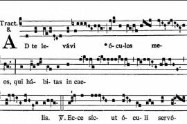 Misa cantada: sábado 23 de marzo en la Catedral Santa Florentina